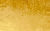 collezione velluto unito col gold